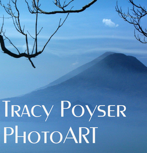 Tracy Poyser PhotoART