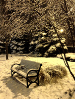 Snowy Bench - Sheridan & Thorndale