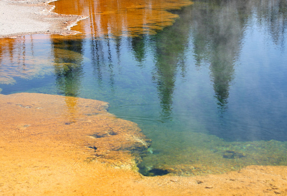 Piney Pond Colors - Lower Basin